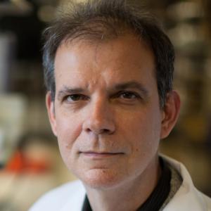 Arturo Casadevall,Bloomberg Distinguished Professor